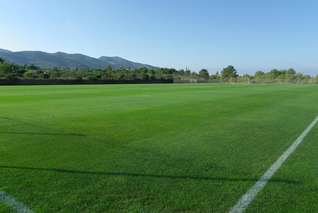 albir garden sports futbol 04
